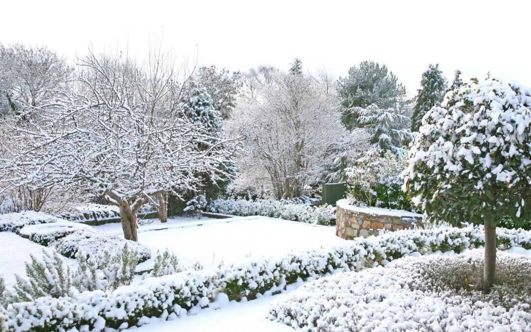 Giardino d'inverno Firenze