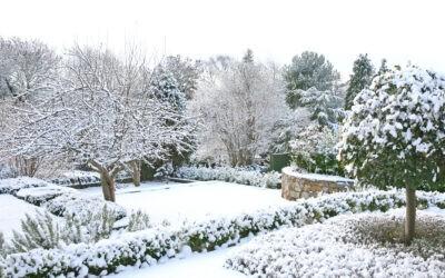 Giardino d'inverno Firenze: romanticismo e bellezza senza tempo